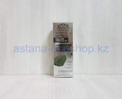 Маска для лица 'Secrets of Arctica', глубокое очищение, для нормальной и жирной кожи (на арктическом торфе и каолине) — 75 мл