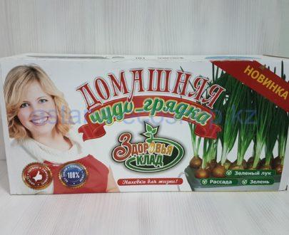 Проращиватель 'Домашняя чудо-грядка' с компрессором (зеленый лук, рассада, зелень), без использования земли
